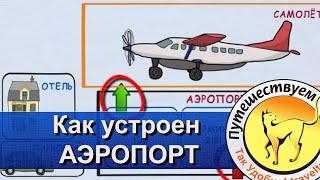 видео Международный аэропорт Шереметьево: как доехать, схема терминалов