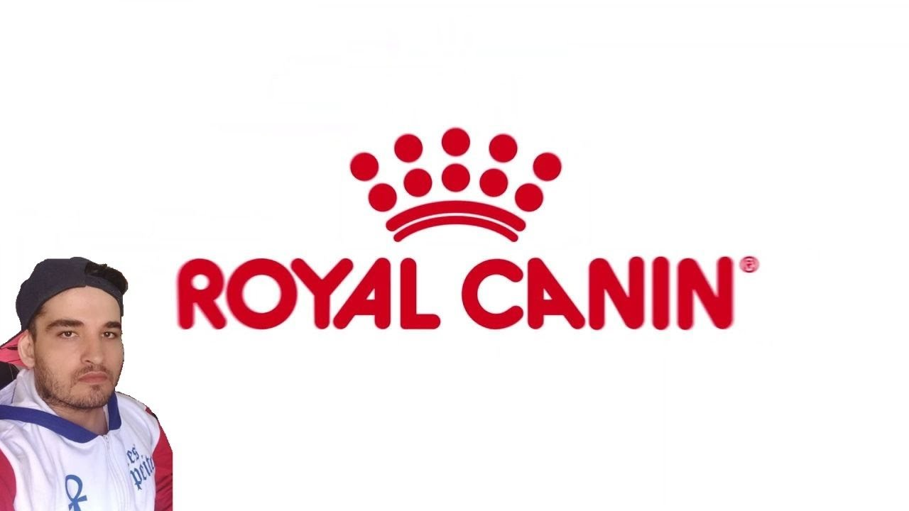 RAÇÃO ROYAL CANIN É BOA? OU É SÓ MARKETING!?