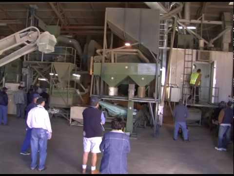 Bean Growers Australia Grain Handling Facility