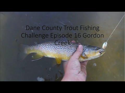 Dane County Trout Fishing Challenge Episode 16 Gordon Creek