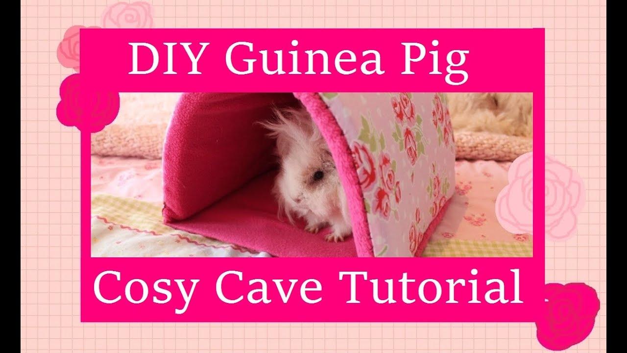 Diy guinea pig cosy cave tutorial youtube for Diy guinea pig things