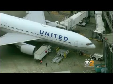 Teen Speaks Out After Sex Assault On United Flight