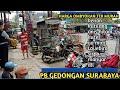 Harga Burung Paling Murah Di Pasar Gedongan Surabaya  Mp3 - Mp4 Download