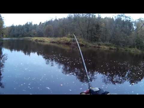 Ловля лосося. Вечный звон.