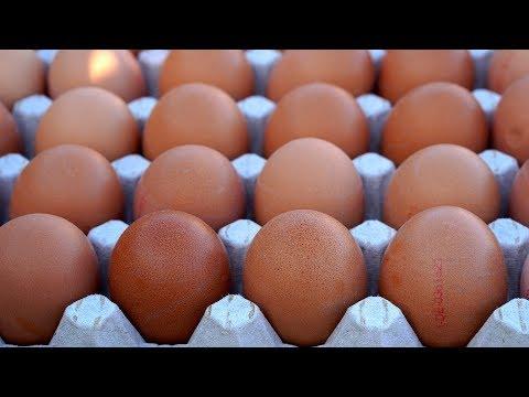 Der Mann wollte 50 Eier essen: Jetzt ist er tot!