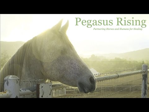 Pegasus Rising's Mission