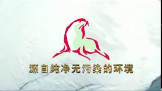 해보력(Haeboryok)/물범육(seal meat)/…