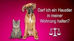 Dürfen Vermieter Hunde oder Katzen verbieten?