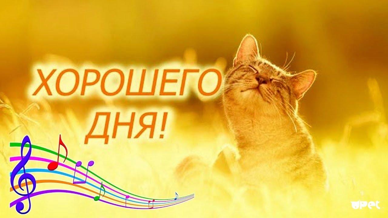Желаю всем хорошего дня, отличного настроения!