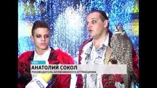 В Уфе начались гастроли  цирка Никулина на Цветном бульваре(Информационный сайт ГТРК