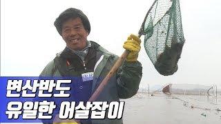 전통 어로방법 어살잡이 어부 김효곤씨 2012년제작 어…