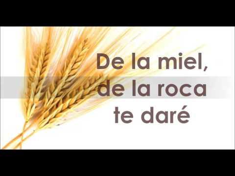 Te daré lo mejor del trigo. Letra - Zulema T.