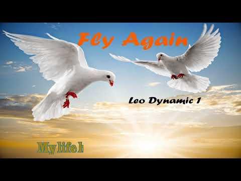 'Fly Again' by Leo Dynamic1