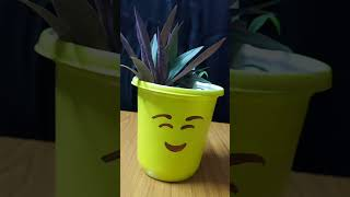 #shorts pot painting #artandcraft / waste container turns in to a cute plant pot #planting