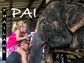 #47. PAI, THAILAND | Grand Canyon, Elephants & Backpackers paradise!