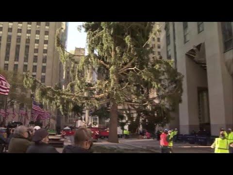 Christmas-tree-arrives-at-NYCs-Rockefeller-Center