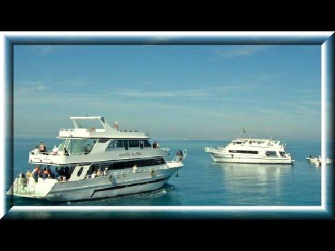 На яхте по Красному морю. On a yacht in the Red Sea