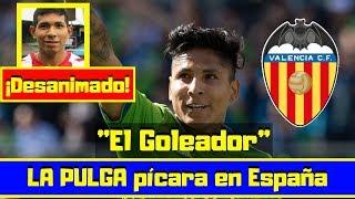 Raúl Ruidíaz ¡BOMBAZO! 🔴 El Valencia CF quiere un ¡GOLEADOR! ⚽