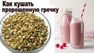 Самая полезная каша смузи из пророщенной гречки. Как есть пророщенную гречку. Рецепт живой каши