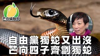 20200206d-自由黨獨蛇又出沒-芒向四子齊劏獨蛇-芒向快報