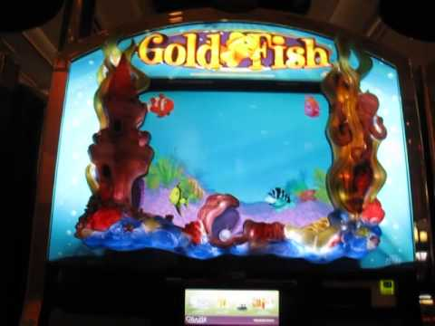 Gold Fish Slots Max Bet Big Win - image 3