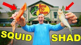 Bass Pro Shops Live Bait Fishing Challenge! (Squid vs Shad vs Worms)
