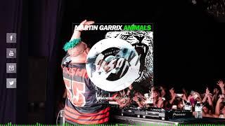 Martin Garrix vs. Tisoki - Animals vs. Bring It Back (Slushii Extended Mashup)