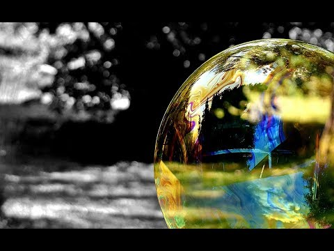 """The """"Everything Bubble"""" 