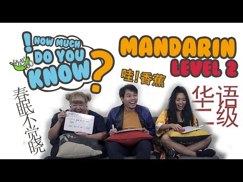 How Much Do You Know - Mandarin Level 2