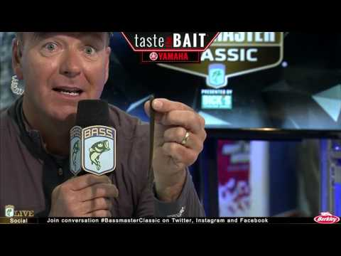 Taste the Bait: Mike Iaconelli's early Bassmaster Classic set up