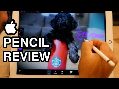 Video Review: Apple Pencil is a powerful tool, even if you're not an artist