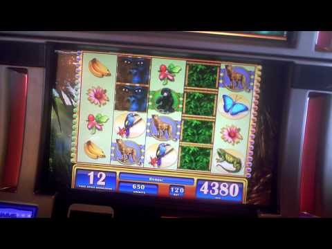 Gorilla Chief slot bonus win at Parx Casino