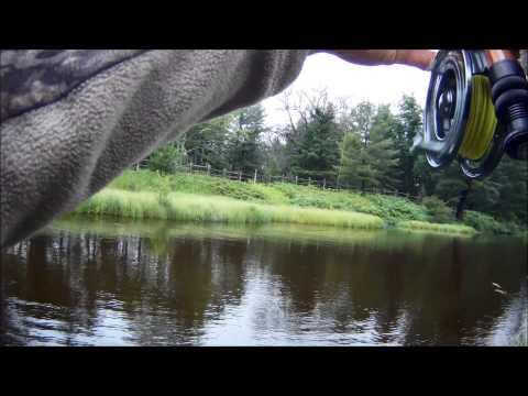 Grayling Michigan Fly Fishing