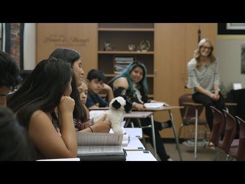 Xây dựng mối quan hệ: Tìm hiểu sinh viên của bạn