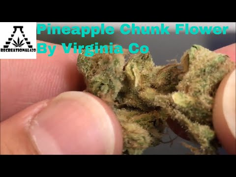 Recreational Cannabis Review of Pineapple Chunk Flower By Virgina Co