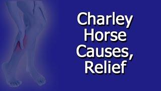 Slang significado horse charlie
