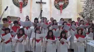 Ca Vui Noel (Calypso Noel) - Ca Doan Thanh Gia
