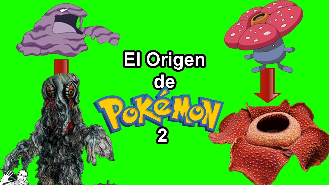 En que se Basan los Pokémon ep2 (Kanto)