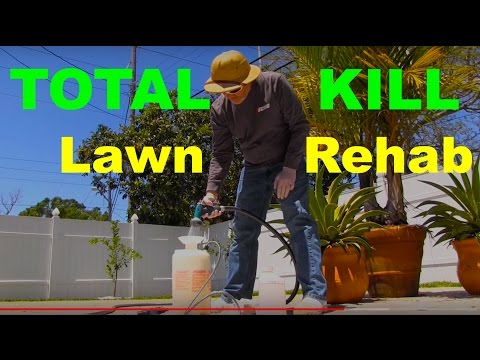 "How To Kill A Lawn With Glyphosate or ""RoundUp"""