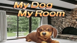 My Dog My Room Free - iPhone Gameplay Video