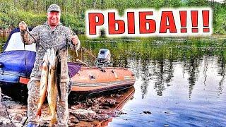 Рыбалкаl Зубастые Щукиl Из Еды Сухари Да Сольl Робинзоны