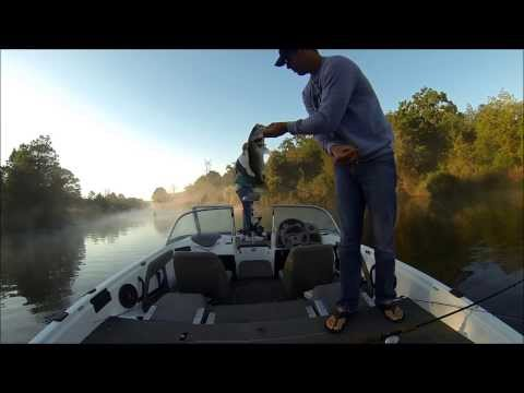 Bass Fishing Lake Bastrop TX