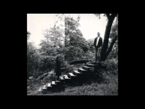 Timber Timbre ~ Patron Saint Hunter