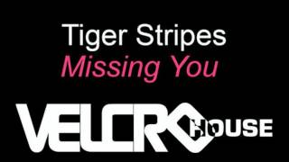 Tiger Stripes - Missing You (Raw Artistic Soul Remix)