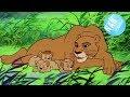 SIMBA EL REY LEÓN serie animada | Simba dibujos animados | Simba King Lion en español | EP. 25