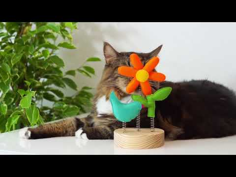 vivipet-|-garden-spring-toy-interactive-cat-toy-for-human-and-cats