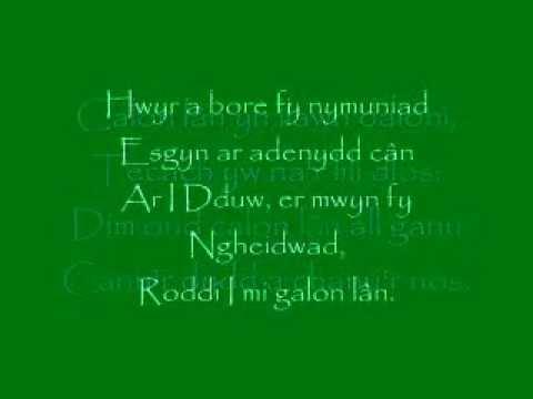 Calon Lân lyrics