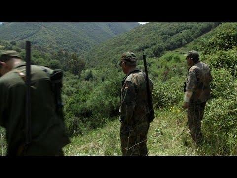 Algeria boar hunters return cautiously after civil war hiatus