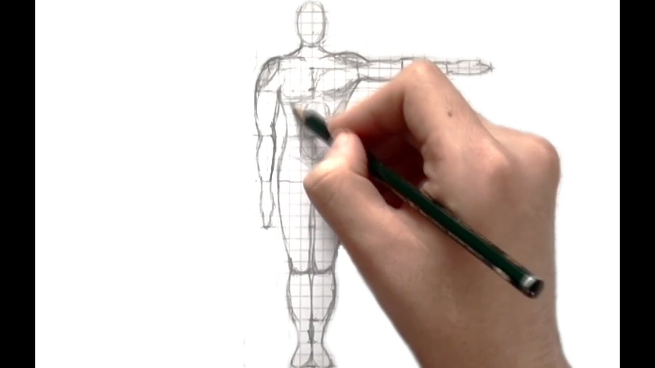 How To Draw A Body Using Simple Proportions  Tips & Tricks 8  Youtube