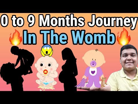 How Baby Grows in the Womb During Pregnancy- Gestation Period Explained in detail [HINDI]